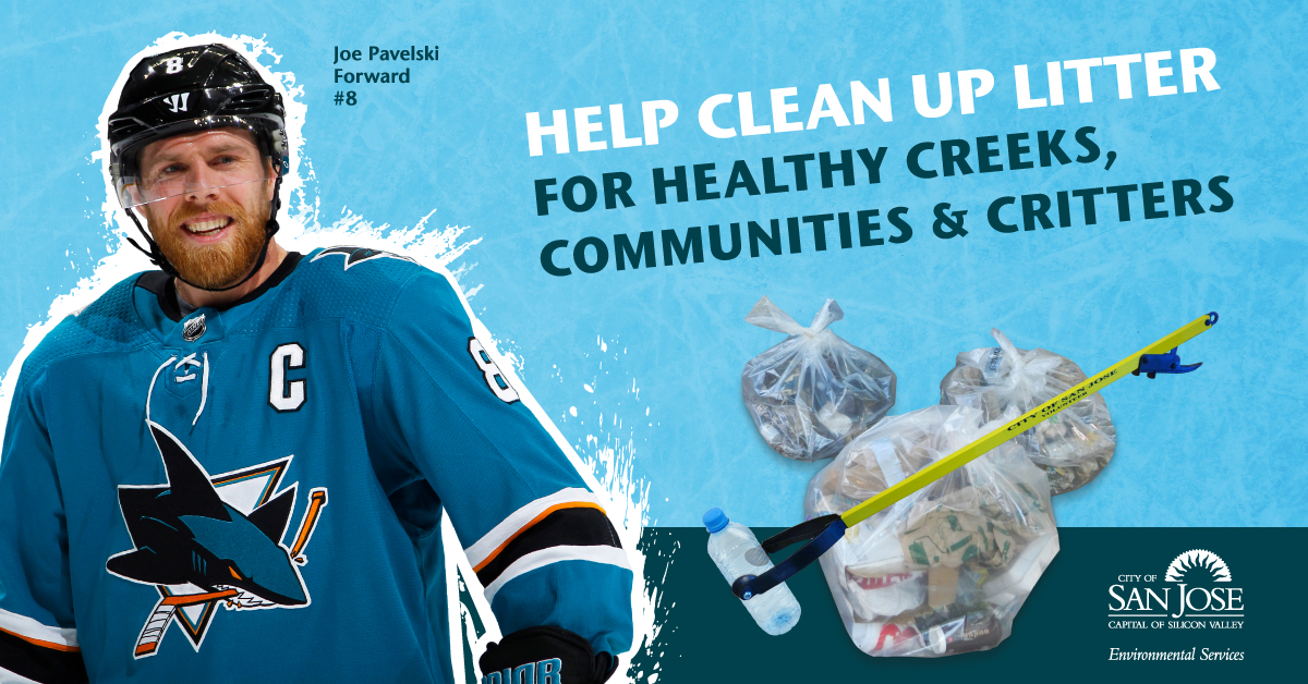 Hockey player: Help Clean Up Litter