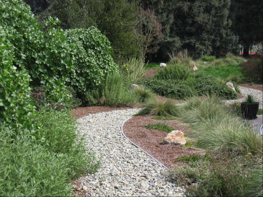 Maryanne quincy q gardens landscape design green gardener spotlight watershed watch - Disenos de jardin ...
