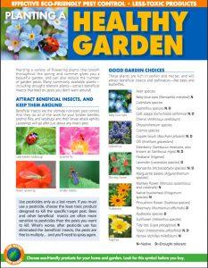 Healthy Garden
