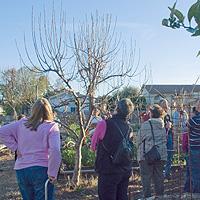 Green Gardener Graduates