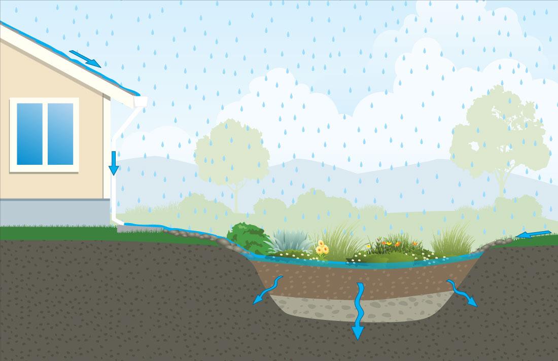Residencial jardín de lluvia