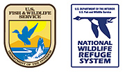 The Don Edwards San Francisco Bay National Wildlife Refuge