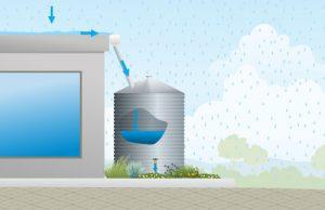 Rain Barrels and Cisterns