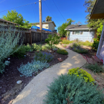 Backyard of home with concrete path