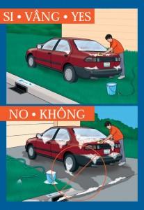 Residential Car Washing