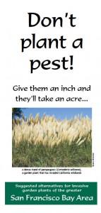 Don't Plant a Pest